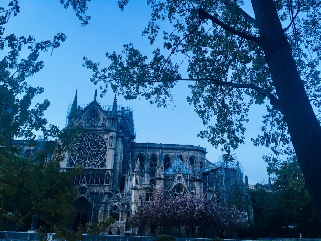 Notre Dame after fire